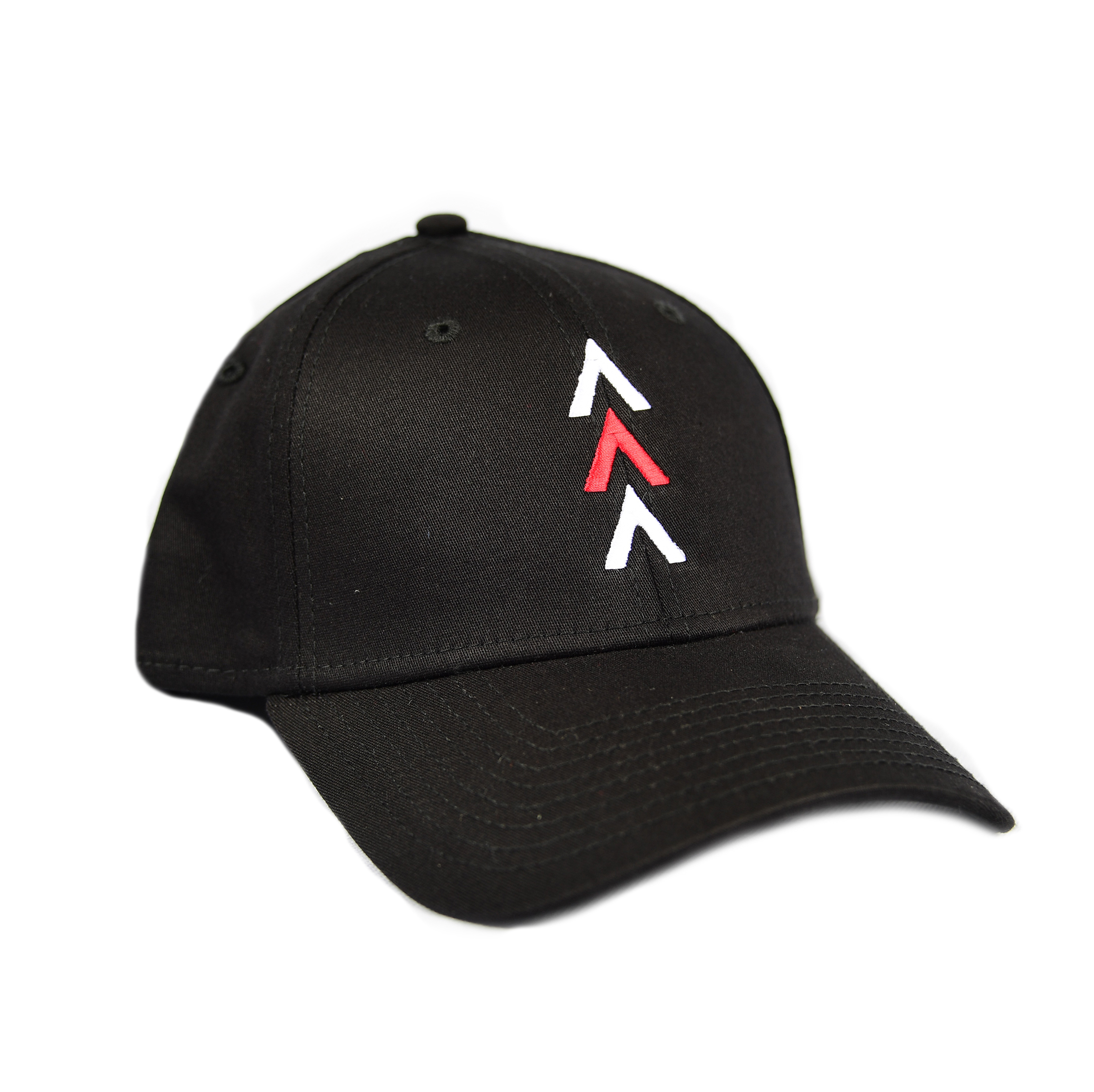 You Cannot Fail New Era 39THIRTY Hat